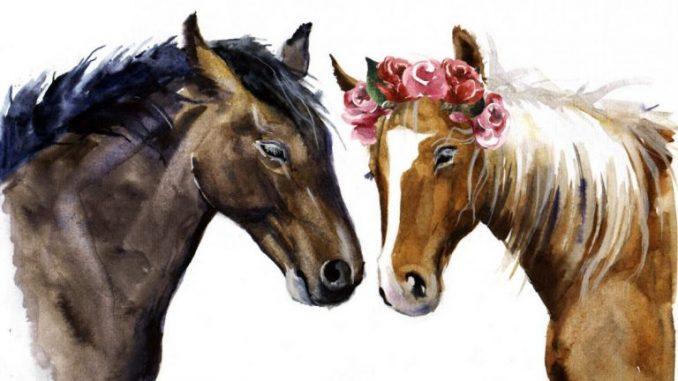 Leutar.net Kad muž i žena postanu otac i majka – oni postanu i konj i kobila