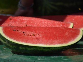 Leutar.net Znakovi da je lubenica zrela i sočna!