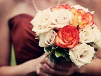 Leutar.net Cvijeće od Majakovskog