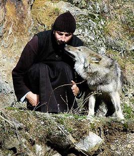 Leutar.net Zašto je Srbin vuk: Kult vuka u srpskom narodu
