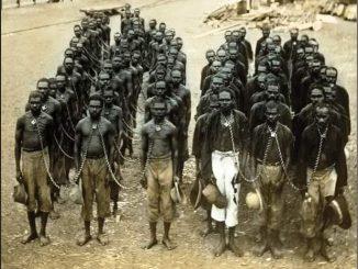 Leutar.net Crni robovi u Americi bili su podijeljeni u dvije skupine: one koji su služili u kućama i one koji su obrađivali zemlju.
