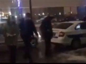 Leutar.net Šutnuo psa na Slaviji, a ovako je sproveden u policiju (VIDEO)