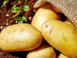 Leutar.net Građanima Banjaluke biće podijeljeno 30 tona krompira