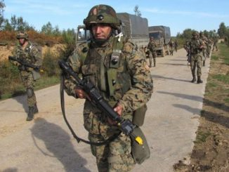 Leutar.net Haos na Manjači! Medvjed napao NATO vojnike, za trojicom se traga!