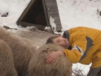 Leutar.net Dječak prvu jagnjad kupio iz kasice, sada ima 100 ovaca