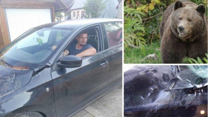 Leutar.net Medvjed na putu u Hrvatskoj napadao automobile