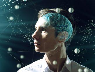 Leutar.net Povezanost mozga i testisa je veća nego što se mislilo