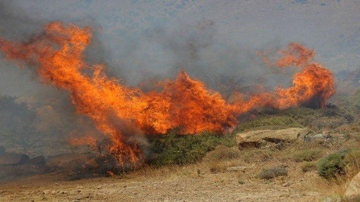 Leutar.net Veliki požar na grčkom ostrvu Evia, u toku evakuacija