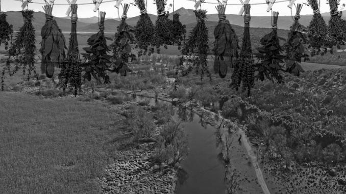 Leutar.net Liječenje na području Istočne Hercegovine